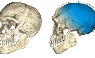 L'origine più antica dell'Homo sapiens: trovati resti di 300mila anni fa