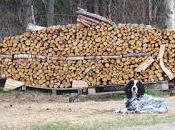 Cataste legno artistiche