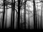 Bianca Noir Capitolo Indagini della Foresta Nera