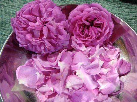 Marmellata di rose antiche