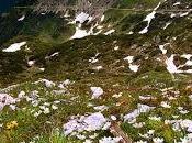 Benvenuti Mondo, Pale Martino Castrozza Dolomiti