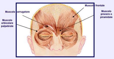 I Benefici del Botox