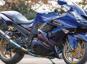 Kawasaki 1400 Project