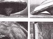Londra: Scoperti Rottami nell'archivio Museo della Scienza?