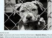 """Presentazione progetto """"Zero cani canile"""""""