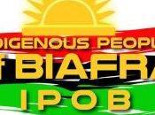 Nigeria: introvabile Nnamdi Kanu leader Movimento popoli indigeni Biafra (Ipob)
