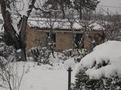 magica neve arrivata Verde quiete