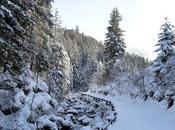 Facile escursione invernale Candido Sesto