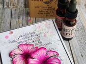 hibiscus affair