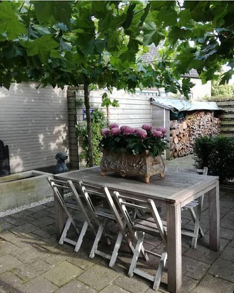 L'immagine può contenere: persone sedute, pianta, tabella, spazio all'aperto e spazio al chiuso