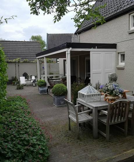 L'immagine può contenere: pianta, albero, abitazione e spazio all'aperto
