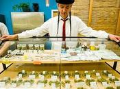 mercato della cannabis rende molto bene