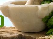 #orgogliopesto: Pesto genovese diventa Patrimonio dell'Umanità almeno prova