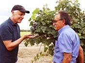 Michele Placido passione vino