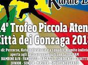 Skorpion Karate Trofeo piccola Atene città Gonzaga CSEN