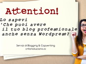 GOOGLE DOMAINS mette TURBO blog SUBITO blogger PROfessionista