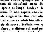 "Sanremo ""Passeggiata (1827) Liguria Occidentale"" Giacomo Navone (edita 1831)"