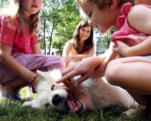 Cani e nipoti: decalogo