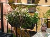 balcone primaverile bellissimo: come organizzarlo meglio piante arredi
