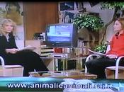 Arca 2000 tre- 2003