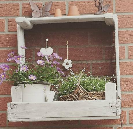 L'immagine può contenere: pianta, fiore, tabella e spazio all'aperto