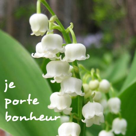 Cultura: Perché i Francesi regalano fiori di mughetto il 1° maggio?