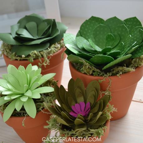 Come fare delle piante grasse in carta
