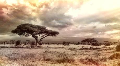 5 cose da sapere prima di partire con lo zaino in spalla per l'Africa