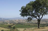 Consorzio Tutela Vini della DOC Maremma Toscana: Ritorna Maremmachevini!