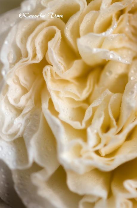 Un risotto alle rose…. per #SEGUILESTAGIONI di MAGGIO