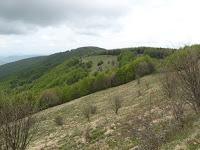 Da Castellaro al Bivacco Laguione.