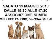 Roma, maggio: Aloe vera integrazione naturale benessere cani gatti