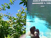 Recensione: Divorare cielo, Paolo Giordano