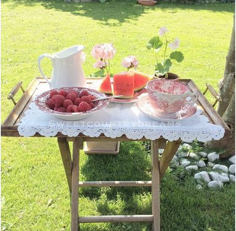 L'immagine può contenere: persone sedute, tabella, fiore, pianta, erba, spazio all'aperto e cibo