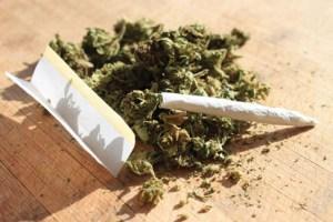 Svizzera – Cannabis in vendita da Lidl