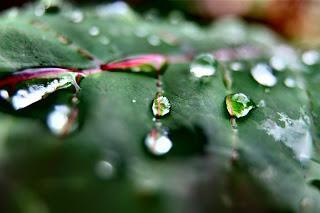 Piove sul bagnato...