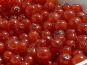 Ribes rosso tutti!