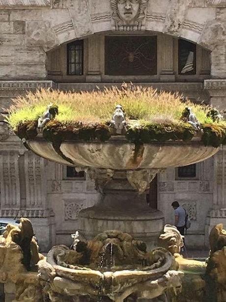 STOP DEGRADO! Riprendiamoci Roma scende in campo con l'obiettivo di incidere nel tessuto cittadino, canalizzando in modo consapevole le energie positivamente creative di Roma.