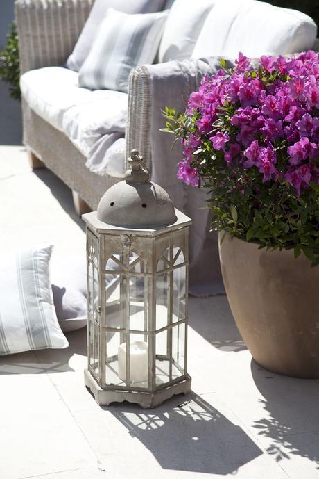 00302922 O. Una maceta de buganvilla y un farol gris con una vela_00302922 O