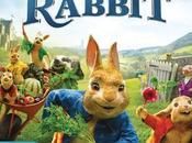 siete persi Peter Rabbit cinema, ecco dvd. #universalpictureitalia