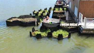 Rotterdam: Dalla plastica, un'isola verde per la città!