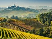 gustose strade vini sapori Italia, gustare calma, percorse vigneti.