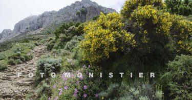 Trekking in Sardegna sul Monte Albo