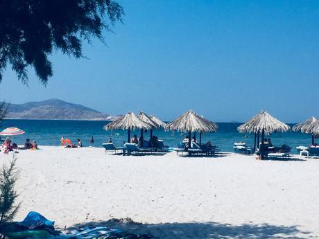 A Kos, il giardino dell'Egeo