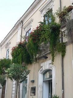 Balconi fioriti a ortigia siracusa paperblog for Idee per terrazzi fioriti