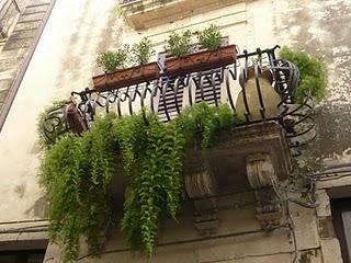 Balconi fioriti a ortigia siracusa paperblog - Idee per terrazzi fioriti ...