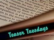 Teaser Tuesdays (22)