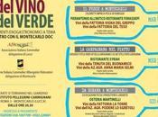 """consiglio posticino """"Salotto Vino Verde"""""""