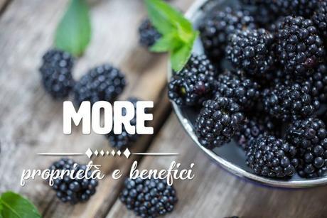 more frutto
