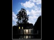 """Turn Century"": poesie Claudio Sottocornola tradotte inglese"